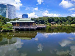 hamarikyu giardini viaggio a tokyo